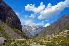 绿色山森林和树生长在岩石的,自然风景透视,高加索,俄罗斯惊人的自然视图  库存图片