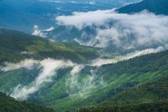 绿色山谷和雾在自然冬天期间环境美化 库存照片