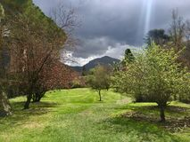 绿色山谷在Ninfa,意大利庭院里  免版税库存照片