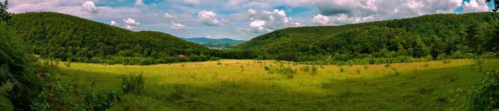 绿色山谷的美丽如画的全景在宽倾斜之间的与一个农村房子的一个红色屋顶,进行下去树 图库摄影