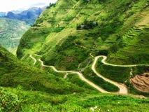 绿色山风景与稻米和曲线路的 免版税库存照片