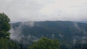 绿色山风景和有雾的天空 多云山天空 影视素材