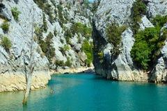 绿色峡谷的独特的自然保护的岩石和树木繁茂的岸 图库摄影