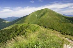 绿色峰顶 库存图片