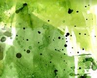 绿色弄脏拉格背景 水彩 库存例证