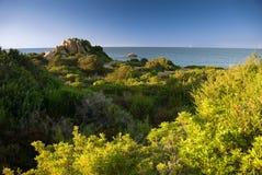 绿色意大利横向撒丁岛 库存图片