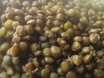 绿色扁豆 库存图片