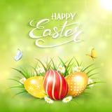 绿色晴朗的背景用在草的复活节彩蛋 库存照片