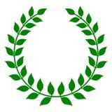 绿色月桂树花圈 库存照片