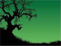 绿色本质 向量例证