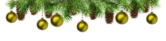 绿色杉木枝杈、球和锥体圣诞节上面边界的 库存照片