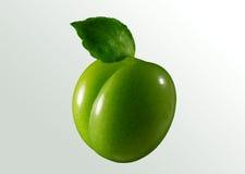 绿色李子 库存照片