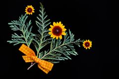 绿色杜松分支与一把黄色弓的由织品和自然花制成在黑背景 库存图片