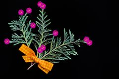 绿色杜松分支与一把黄色弓的由织品和自然花制成在黑背景 库存照片