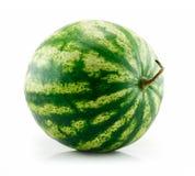 绿色查出的成熟西瓜白色 库存图片