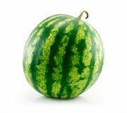 绿色查出的成熟西瓜白色 库存照片