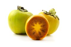 绿色柿属亚洲柿树 库存图片