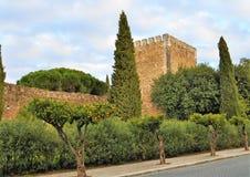 绿色树丛围拢的城堡 免版税库存图片
