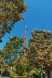 绿色树围拢的举世闻名的埃菲尔铁塔 免版税库存图片