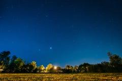 绿色树森林在公园在夜满天星斗的天空下 背景美好的图象安装横向晚上照片表使用 免版税库存照片