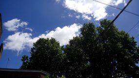 绿色树自然云彩天天空 库存图片