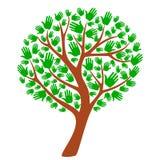 绿色树,模板,标志,成长 库存例证