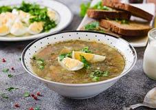 绿色栗色汤用鸡蛋 夏天菜单 健康的食物 库存图片