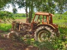 绿色森林在老挝 库存照片
