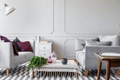 绿色植物、玻璃花瓶和被溺爱的咖啡杯在咖啡桌上在斯堪的纳维亚客厅有明亮的灰色墙壁的有造型的a 库存照片