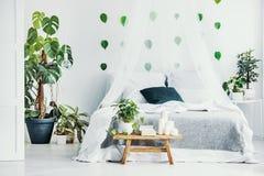 绿色植物和蜡烛在长木凳在时兴的卧室内部与机盖 免版税图库摄影