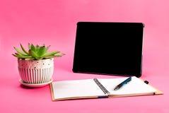 绿色植物,开放笔记本、笔和片剂个人计算机在蓝色背景 免版税库存照片