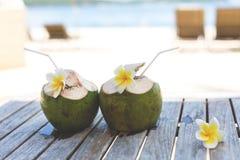 绿色椰子和赤素馨花花在木桌上在海边在夏天 免版税库存图片