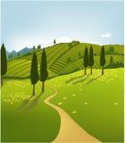 绿色横向山 免版税库存图片