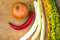 绿色橙色夏南瓜、白豆荚、葱和红色辣椒 库存图片