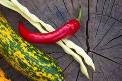 绿色橙色白豆夏南瓜、荚和红色辣椒 图库摄影