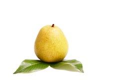 绿色水多的叶子梨白色 免版税库存图片