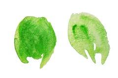 绿色水彩污点 免版税库存图片