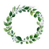 绿色水彩花圈 新夏天叶子和树枝的构成 免版税库存图片