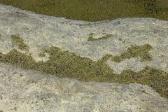 绿色沙粒Papakolea海滩绿色沙子海滩 免版税库存图片