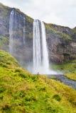 绿色河岸和Seljalandsfoss瀑布 免版税库存图片