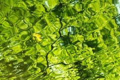 绿色波浪背景或纹理 免版税库存照片