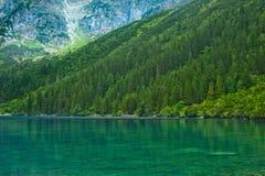绿色湖和山横向 免版税图库摄影