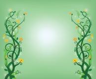 绿色漩涡 免版税库存照片
