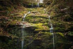 绿色瀑布洞 库存图片