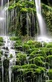绿色瀑布 免版税库存照片