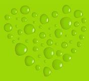 绿色爱 库存照片
