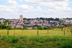 绿色牧场地和地平线从Pederneiras,巴西 免版税图库摄影