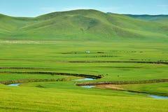 绿色牧场地和弯曲河 免版税库存图片
