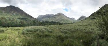 绿色牧场地和辗压小山在S的苏格兰高地 免版税图库摄影