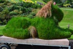 绿色狮子。 免版税库存照片